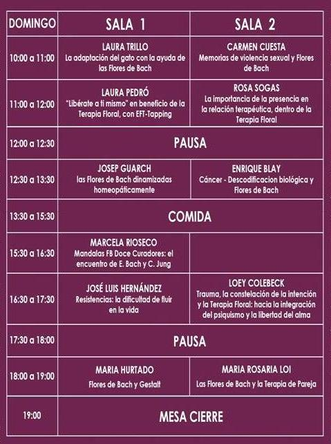 programa-domingo_web2017-2