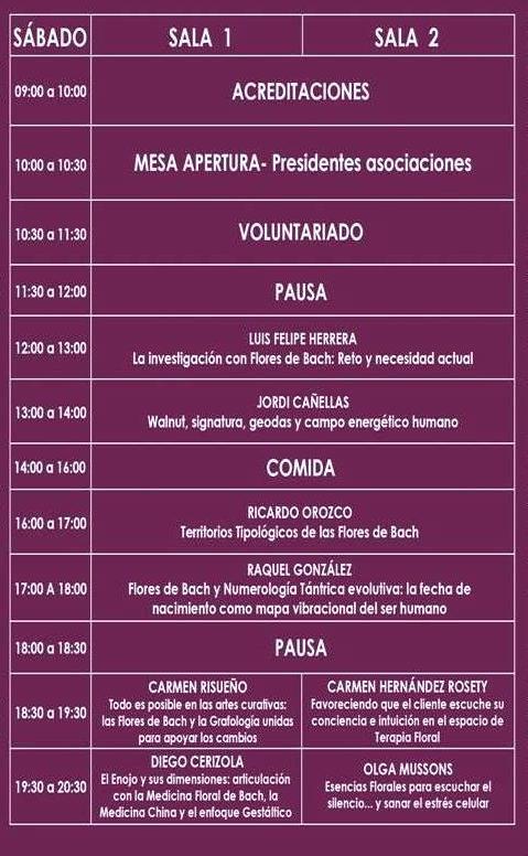 programa-sabado_web2017-2