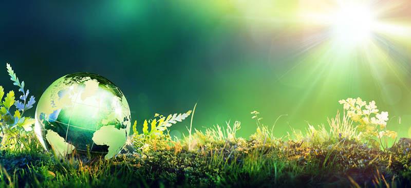 planeta-iluminado-en-la-naturaleza-verde