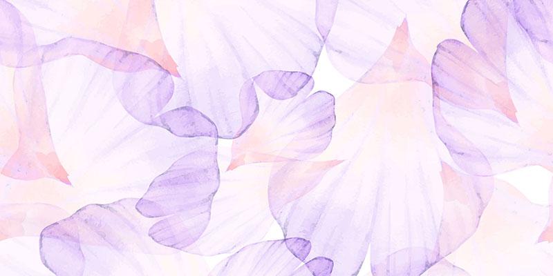Jornada-floral-sedibac