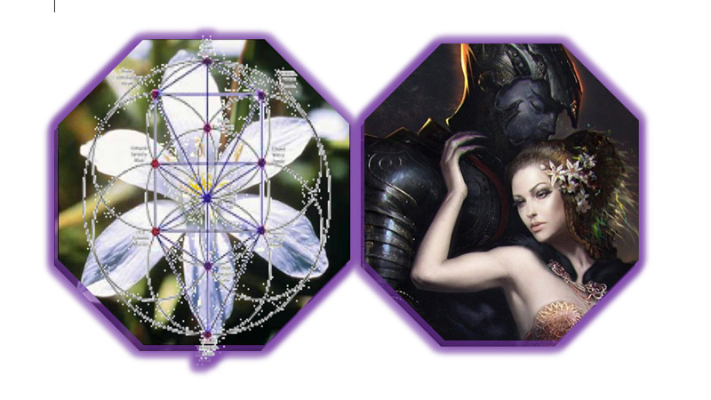 persefone y flores de bach